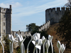 Private tours to Arundel Castle by car