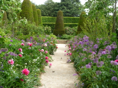 Private tours to Hidcote Manor Garden by car